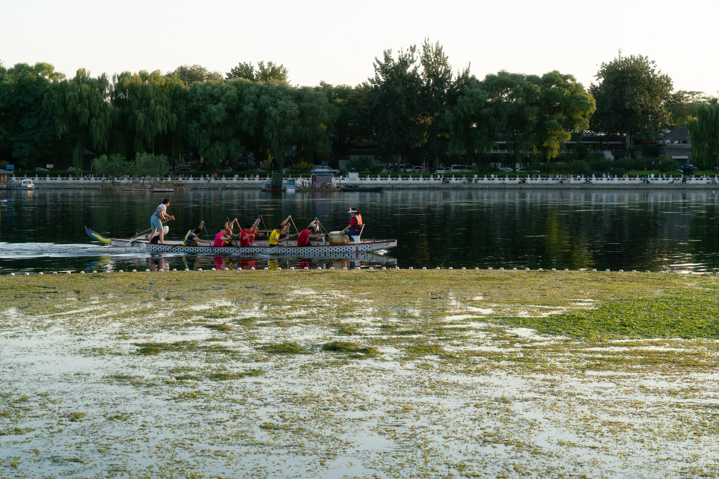 Houhai lake - training for rowing race