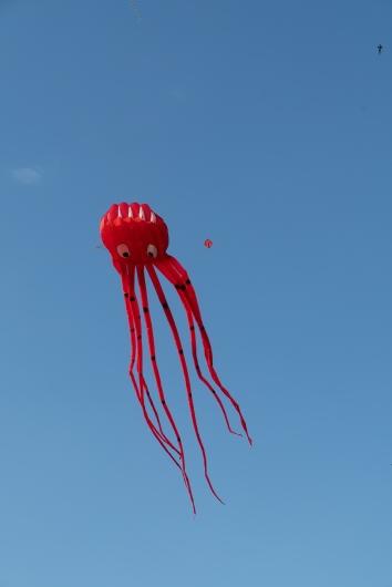 Summer Palace - kites